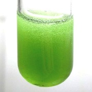 Test tube green_klein